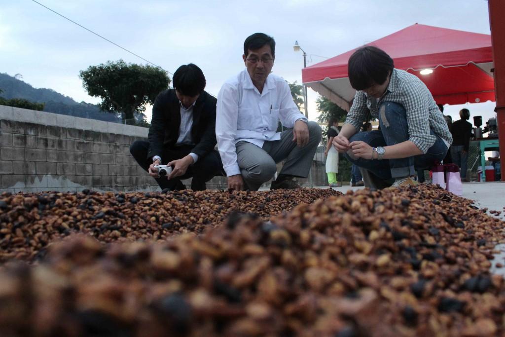Dardo Chen, de la la embajada de China (Taiwán), junto a compradores de café taiwaneses, revisa las semillas de este producto en la finca Loma La Gloria, en el volcán de San Salvador.   Foto Diario Co Latino/ Guillermo Martínez.