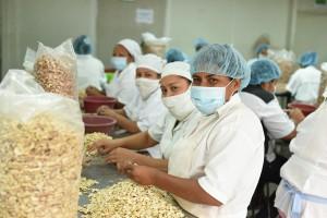 Si queremos garantizar un flujo comercial sostenible de los alimentos, tenemos que compartir los riesgos del cambio climático.