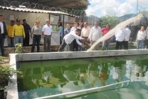 Presidente de la Comisión de justicia y Derechos Humanos Diputado Julio Fabián tira red de pesca en el estanque de tilapias. Foto Diario Co Latino/Jorge Rivera