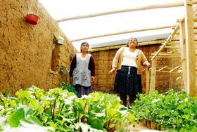 Dos de las horticulturas periurbanas de Sucre, <a href=
