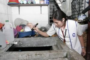 La eliminación de vectores es la medida más efectiva para evitar el zika, el dengue y el chikunguya.